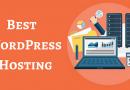 Một số lưu ý khi chọn mua Hosting cho website WordPress